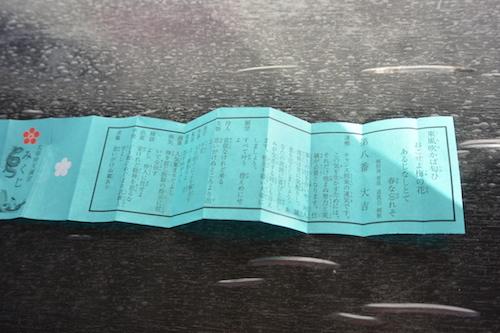 DSC_3162.JPG
